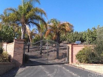 Canyon Lake, Lake Elsinore, Menifee, Murrieta, Temecula, Wildomar, Winchester Rental For Rent: 35980 Meadow Ridge Road