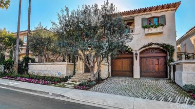 Dana Point Single Family Home For Sale: 64 Ritz Cove Drive