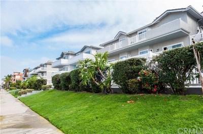 Hermosa Beach Rental For Rent: 446 Monterey Boulevard #G2