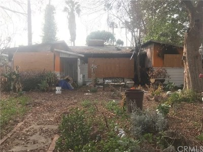 Encino Single Family Home For Sale: 5101 Haskell Avenue