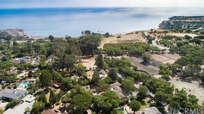 Rancho Palos Verdes Single Family Home For Sale: 5 Ginger Root Lane