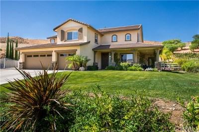 Castaic Single Family Home For Sale: 30015 Valley Glen Street