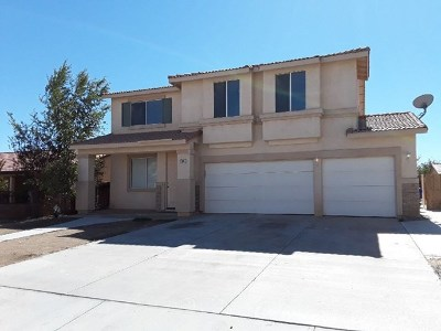 Adelanto Single Family Home For Sale: 11547 Winter Place