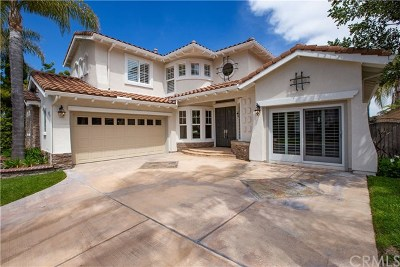 Laguna Niguel Single Family Home For Sale: 28662 Point Loma