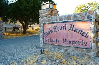 Santa Ynez Single Family Home For Sale: 4025 W Oak Trail Road