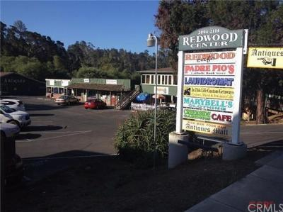 San Luis Obispo County Commercial For Sale: 2086 Main Street