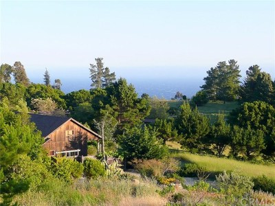 Big Sur Single Family Home For Sale: 9245 Sycamore Canyon
