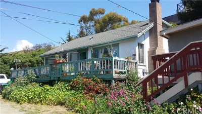 Cayucos Single Family Home For Sale: 388 Taft Avenue