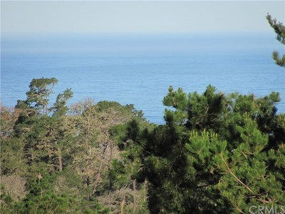 Cambria, Cayucos, Morro Bay, Los Osos Residential Lots & Land For Sale: 950 Pineridge Drive