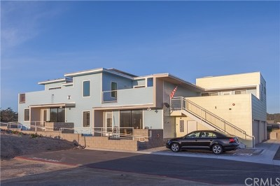 San Luis Obispo County Commercial For Sale: 1111 N Strand Way