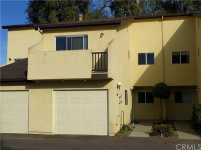 San Luis Obispo Condo/Townhouse For Sale: 1330 Southwood Drive #17