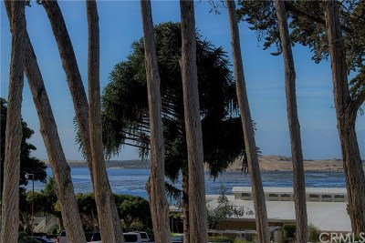 Cambria, Cayucos, Morro Bay, Los Osos Condo/Townhouse For Sale: 134 Sandpiper Circle