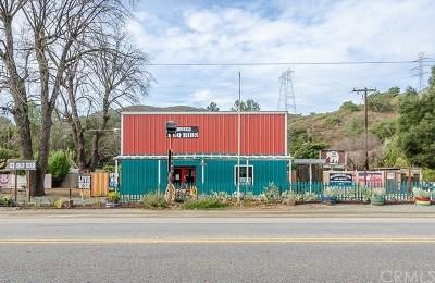 San Luis Obispo County Commercial For Sale: 15050 Morro Road