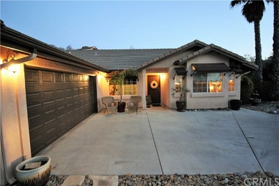 Paso Robles Single Family Home For Sale: 1585 Stormy Way