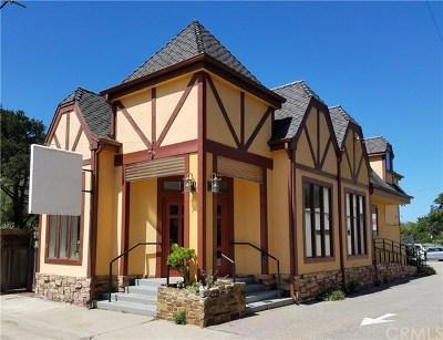 San Luis Obispo County Commercial For Sale: 750 Sheffield Street