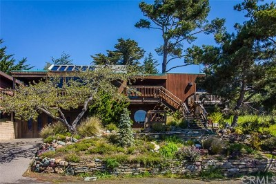 Cambria, Cayucos, Morro Bay, Los Osos Single Family Home For Sale: 5660 Moonstone Beach Drive