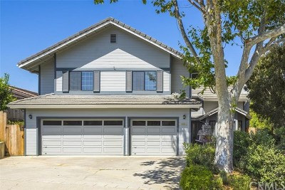 San Luis Obispo Single Family Home For Sale: 850 Del Rio Avenue