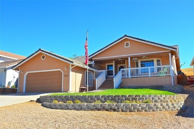 Paso Robles Single Family Home For Sale: 4826 Meadowlark Lane
