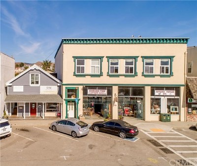San Luis Obispo County Commercial For Sale: 150 N Ocean Avenue