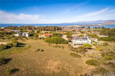 Cambria, Cayucos, Morro Bay, Los Osos Residential Lots & Land For Sale: 286 San Leandro Court