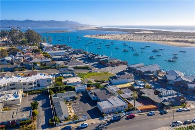 Morro Bay CA Multi Family Home For Sale: $3,450,000