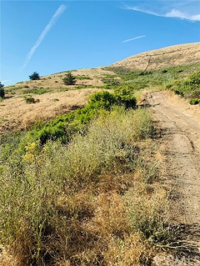 Cayucos Residential Lots & Land For Sale: 19 Wilson Avenue
