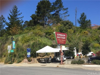 San Luis Obispo County Commercial For Sale: 2197 Main Street