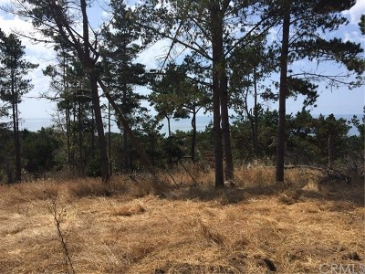 San Luis Obispo County Residential Lots & Land For Sale: 6795 Cambria Pines Road