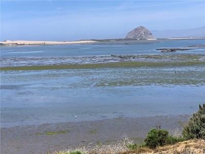 Cambria, Cayucos, Morro Bay, Los Osos Residential Lots & Land For Sale: 1107 Pasadena Drive
