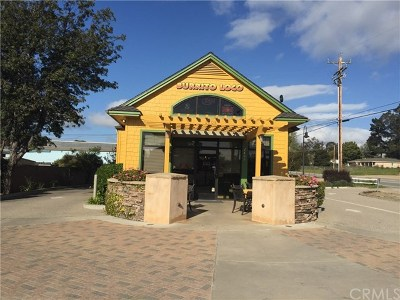 San Luis Obispo County Commercial For Sale: 2808 S Halcyon Road