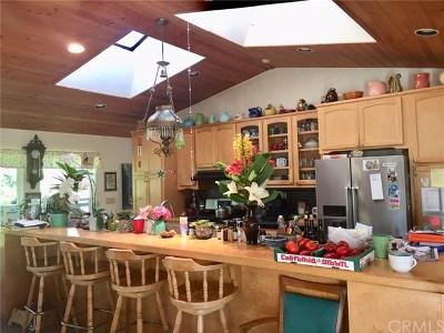 San Luis Obispo County Single Family Home For Sale: 2660 Picachio Road