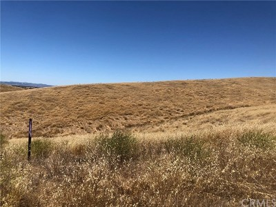 San Luis Obispo County Residential Lots & Land For Sale: 890 Rancho Sheid Way