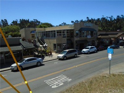 Monterey County, San Luis Obispo County Commercial For Sale: 2338 Main Street