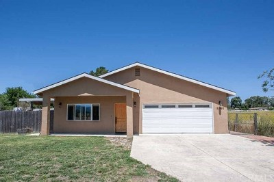 Santa Margarita Single Family Home For Sale: 21990 W. Pozo Road