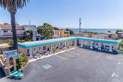 San Luis Obispo County Commercial For Sale: 20 S Ocean Avenue #A