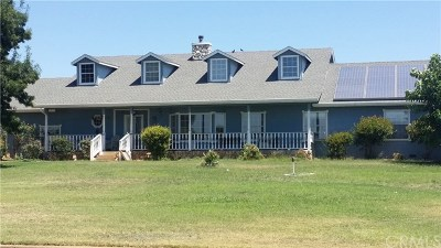Oroville Single Family Home For Sale: 1067 Lone Tree Way