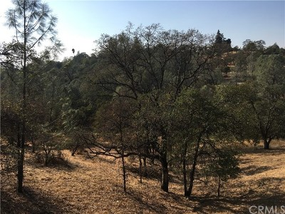 Oroville Residential Lots & Land For Sale: Lemon Hill Drive