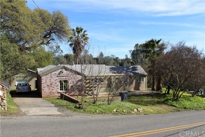 Oroville Single Family Home For Sale: 45 Arbol Avenue