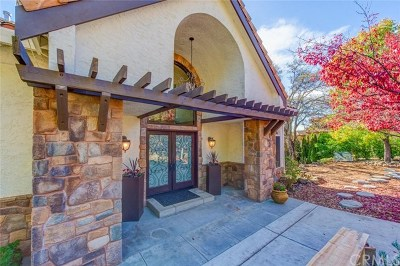 Chico Single Family Home For Sale: 3261 Canyon Oaks