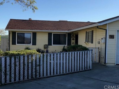 Willows Single Family Home For Sale: 785 S Villa Avenue