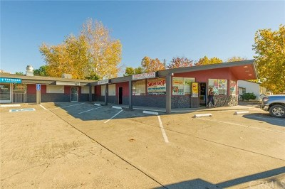 Commercial For Sale: 1345 Feather River Boulevard