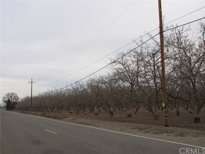 Chico Residential Lots & Land For Sale: W. Sacramento Avenue