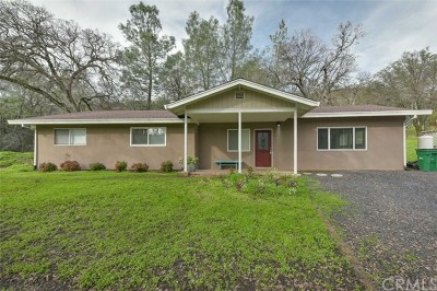 Chico Single Family Home For Sale: 1179 Honey Run Road