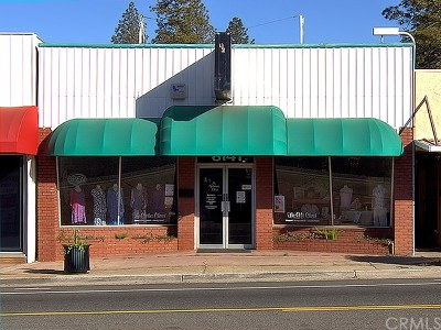 Butte County Commercial For Sale: 6141 Skyway