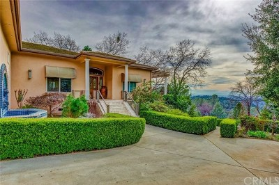 Forest Ranch Single Family Home For Sale: 14900 Woodland Park Drive