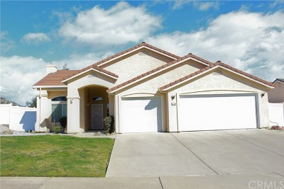 Oroville Single Family Home For Sale: 114 Antler Drive