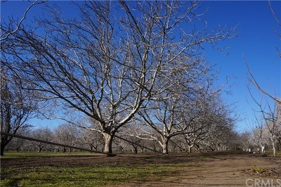 Chico Residential Lots & Land For Sale: Oak Way