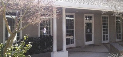 Butte County Commercial Lease For Lease: 643 W East Avenue