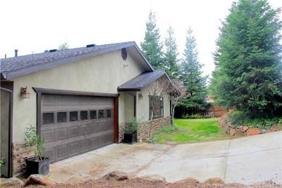 Oroville Single Family Home For Sale: 430 Oakvale Avenue