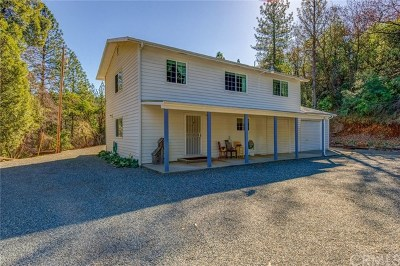 Oroville Single Family Home For Sale: 2337 Forbestown Road